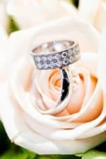 Vielsesringe bryllup, på en bund af roser