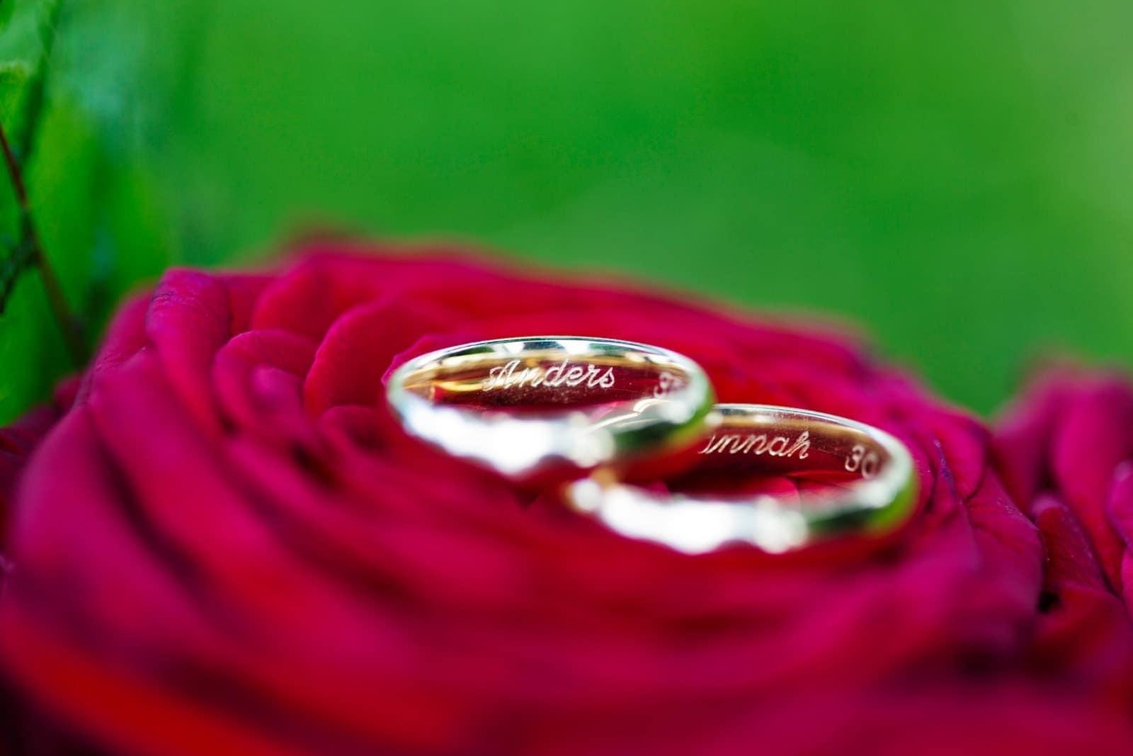 Vielsesringene på en rosenbund